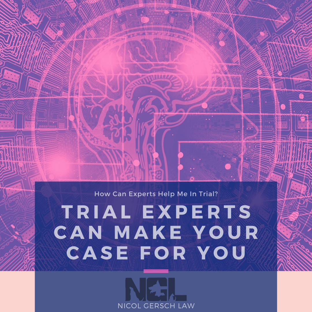 Expert Witness; Trial Experts Can Make Your Case For You; Nicol Gersch Petterson Blog; Brain Circuitry Picture