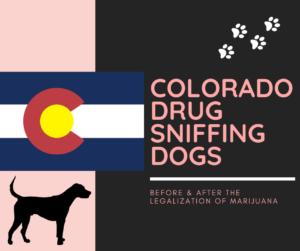 05.19.20 Colorado Drug Sniffing Dogs